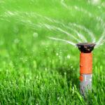 watering-lawn